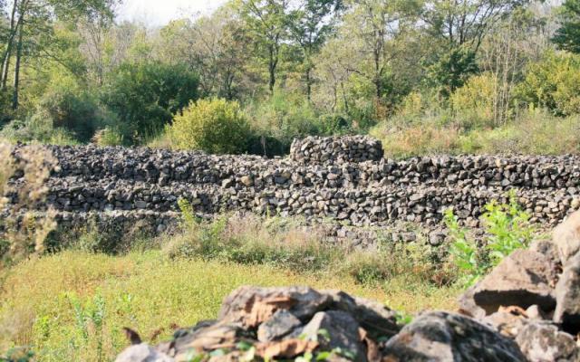 Parque de Pedra Tosca