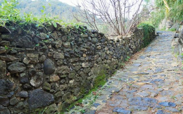 Restes de les muralles de Castellfollit de la Roca